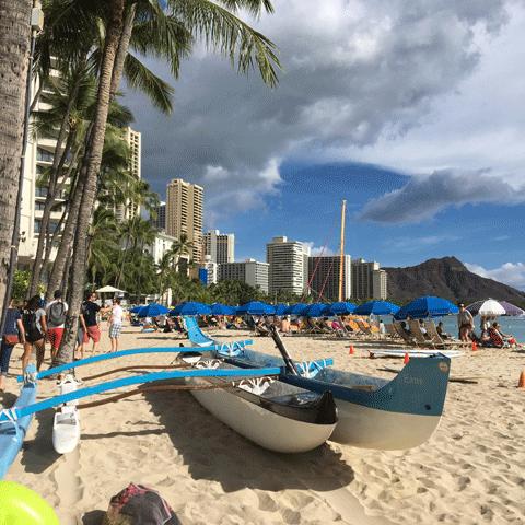 ハワイの風景02