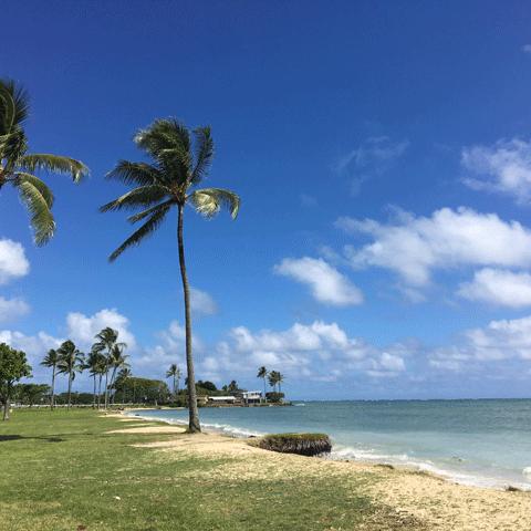 ハワイの風景09