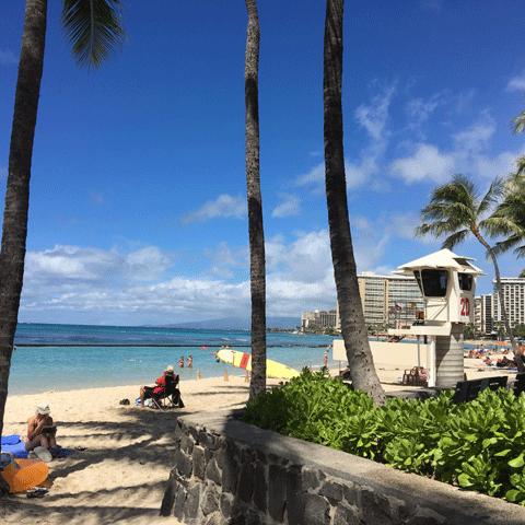 ハワイの風景12