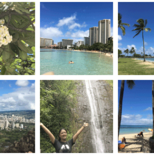 癒やしの島ハワイのスナップ写真